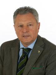 Sergio Divina - Senatore Bersone