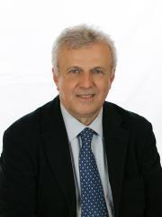 Daniele Gaetano Borioli - Senatore Vercelli