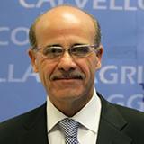 MARIO VENEZIA - Consigliere Matera